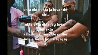 Download denz ekta lyrics 3Gp Mp4