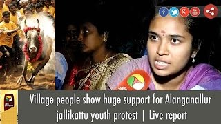 Village people show huge support for Alanganallur jallikattu youth protest   Live report