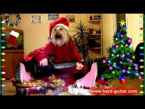 New Year Funny We Wish You a Merry Christmas - Dog playing guitar - Funny Greeting Card