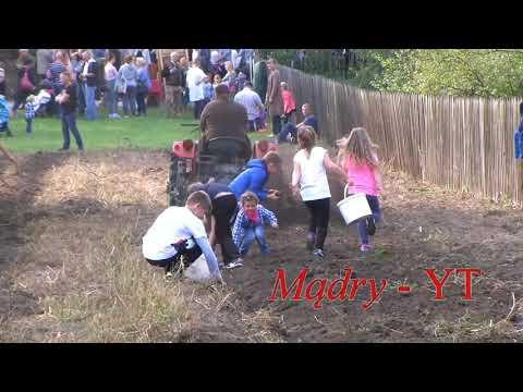 Sielskie, Wiejskie życie ! Tradycyjne WYKOPKI Ziemniaków W Radomiu - 2018