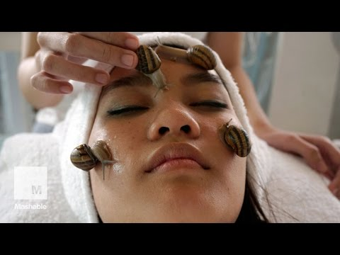 In Thailand, snails are being hailed as the secret to younger, fresher looking skin | Mashable