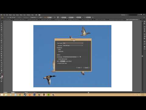 Adobe Illustrator CS6 for Beginners - Tutorial 74 - Tracing an Image Into a Vector