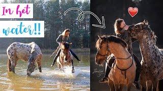 Samen met de paarden in het WATER!   felinehoi