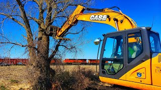 Excavators and Chainsaws