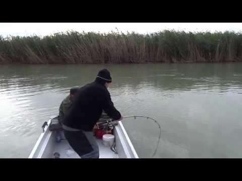 волгодонск рыбалка с лодки
