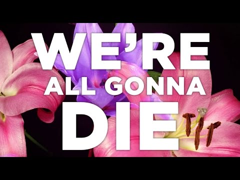 Hank Green - Were All Gonna Die