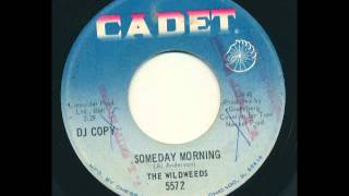 The Wildweeds Someday Morning
