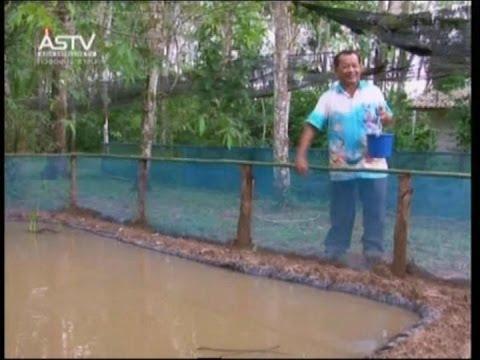 2014/02/09 ชีวาสยาม ช่วงที่1 ตามรอยพ่อ: วิธีการทำบ่อปลาพลาสติก