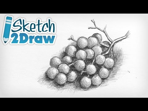 Doodling Grapes with Ball Point Pen