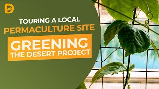 Greening the Desert: Touring a Local Permaculture Site in the Desert