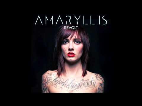 Amaryllis - Kings