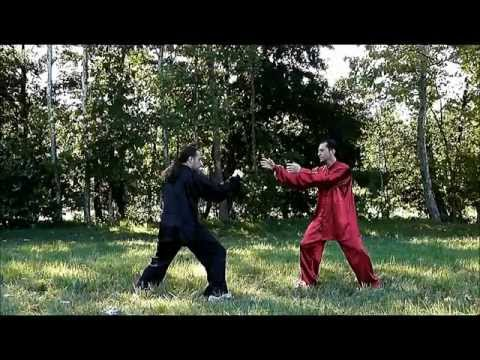 COMBAT TAI CHI - Chen Style Taiji Quan Fighting Techniques - 陈式 太极拳 Image 1