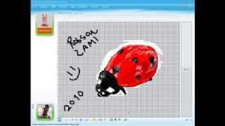 MSN Speed paint ladybug