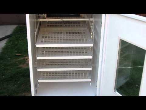 incubator automat performant