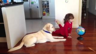 Carmen teaching her assistance dog geography