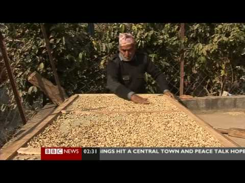 Asia Business Report: 7th February 2013