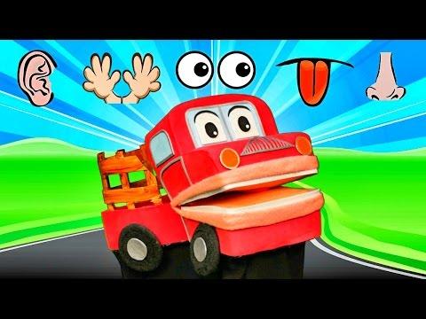 Los Cinco Sentidos - Barney El Camion - Canciones Infantiles - Video Para Niños # video