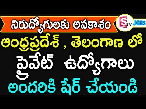 Jobs In Andhra Predesh | Jobs Telangana | Latest Private Jobs|Work From Home Jobs In Telugu|SumanTv