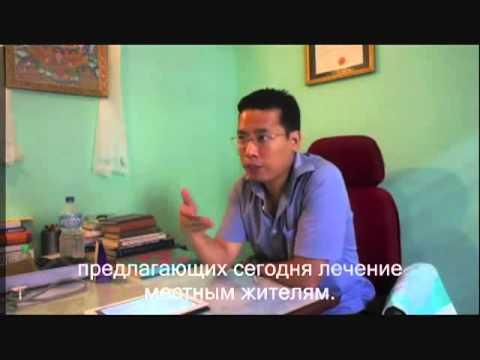 Сколько настоящих тибетских докторов в мире