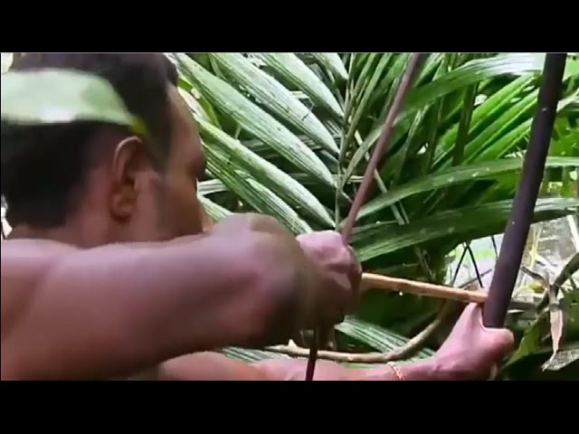 One day to go hunting of amazon forest native