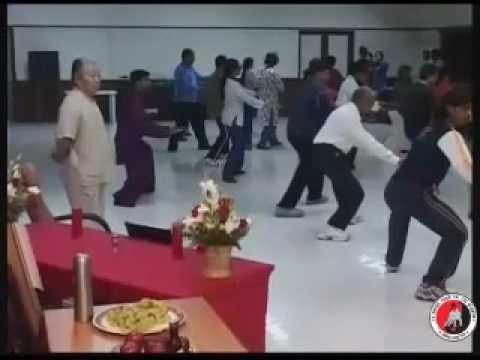 Grandmaster Fu Sheng Yuan's  India Visit 2007 -  Fu Sheng Yuan Tai chi Academy - India Chapter 1/2