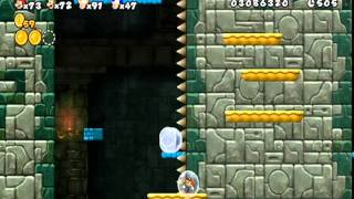 Another Super Mario Bros. Wii (Co-op) | #15