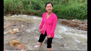 Tham quan vườn Chanh Leo cạnh bờ Suối - Hương vị đồng quê - Bến Tre - Miền Tây