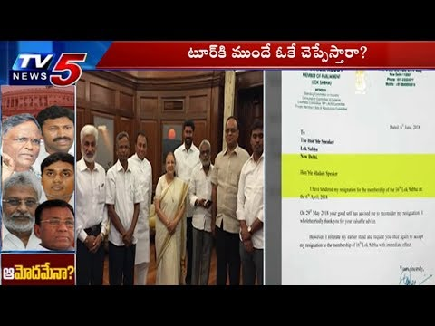 Speaker Sumitra Mahajan Is Likely To Accept The Resignations Of Five YSRCP MPs | TV5 News