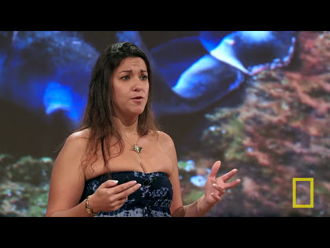 National Geographic Live! - Andrea Marshall: Queen of the Manta Rays