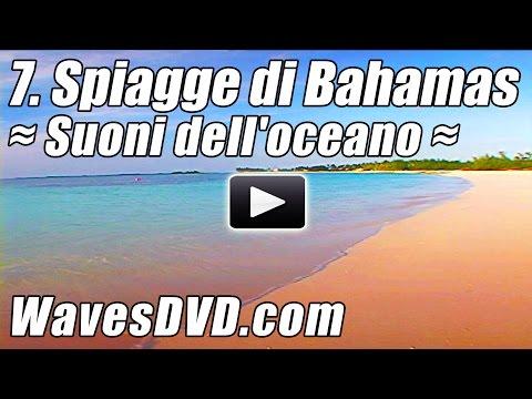 7 Migliori Spiagge di Bahamas Onde DVD relax natura video rilassanti suoni oceano rilassarsi oceano