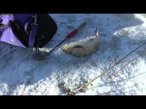 видео рыбалка озера и карьеры челябинской области март 2017