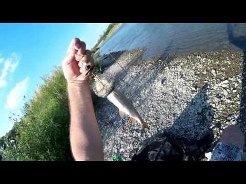ловить рыбу возле шлюза