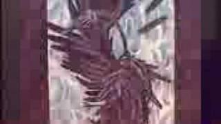 Watch Cemetary One Burning Night video