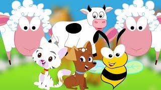 Nhạc Sông Động Vật | bài hát động vật | learn Different Animal Sound | Kids Song | Animal Sound Song