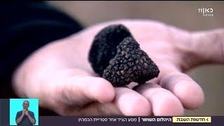 """""""זה מעיף אותך לשמים"""": בזכות החוקרים, פטריית הכמהין הגיעה לישראל"""