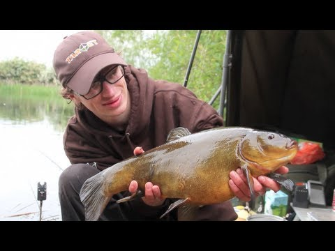Gravel Pit Tench Fishing With Mark Barrett. Chasing Dreams - Episode 5. (video 87) video