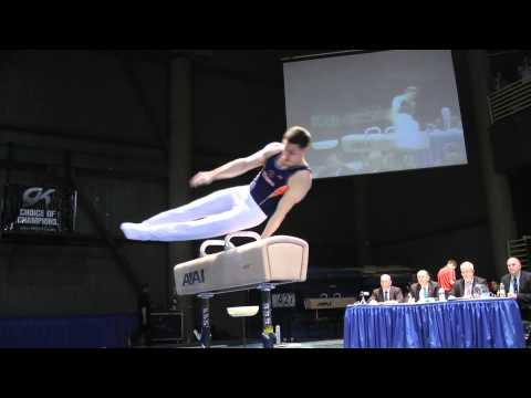 David Sender - Pommel Horse - 2012 Winter Cup Finals