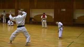 JKF 平安四段 Heian-yondan Seminar by Noboru Kato 2017-05-20@Nagaoka 全空連基本形三