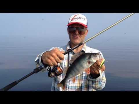 окунь на рыбинке видео