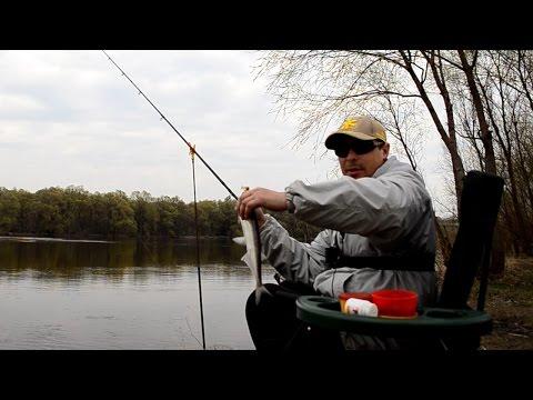 рыбалка весной на реке дон видео