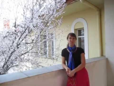 I Visited the U.S. Embassy in Tashkent