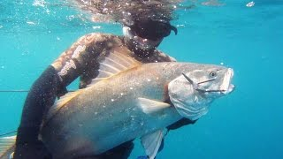 Spearfishing The Transkei