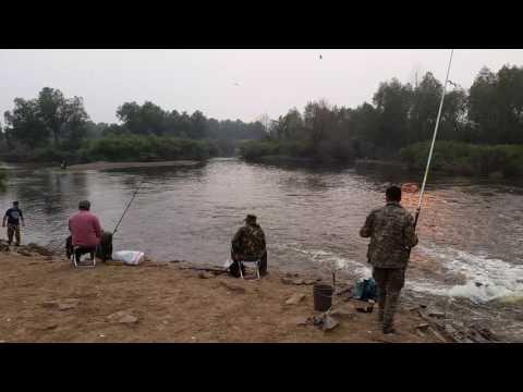 рыбалка на самарке летом