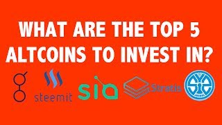 download lagu What Are The Top 5 Altcoins To Invest In? gratis