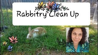 Rabbitry Cleanup