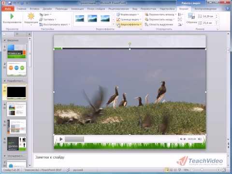 Работа с видео в PowerPoint 2010
