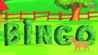Bingo Dog Song Nursery Rhymes | Animated Rhymes & Songs For Kids | CDS Kids Tv