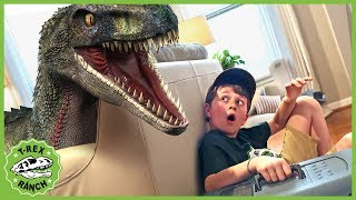 Dinosaurs & Animals for Kids! Giant Dinosaur vs Mystery Pet with Wildlife Animal Adventure Park Zoo