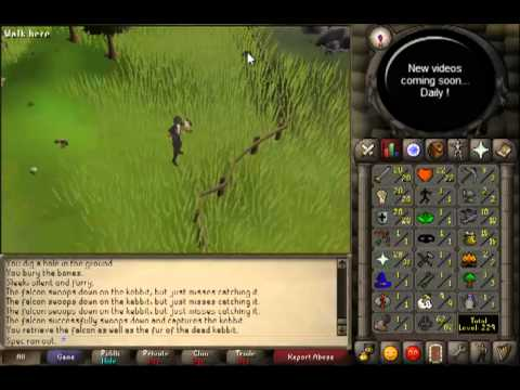 Oldschool Runescape – Getting 63 Hunter