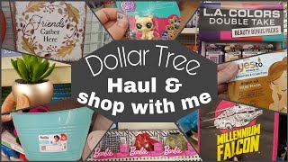 Dollar Tree Haul and Shop With Me • fall diy and camping finds